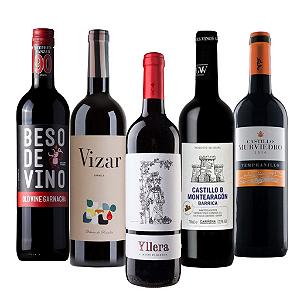Kit com 5 vinhos espanhóis