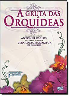 Livro Gruta das Orquídeas, a Autor Carvalho, Vera Lúcia Marinzeck de (2007) [usado]