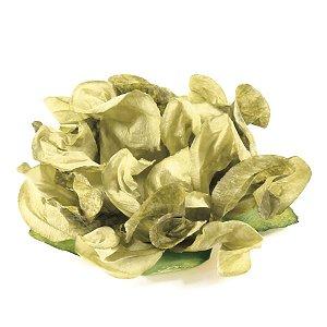 Forminhas para doces 409 - pistache