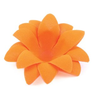 Forminhas para doces Aninha - laranja