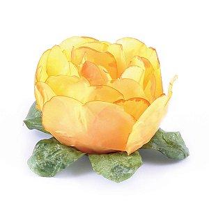 Forminhas para doces Bouganville Beauty - amarelo queimado