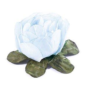 Forminhas para doces Bouganville Beauty - azul celeste
