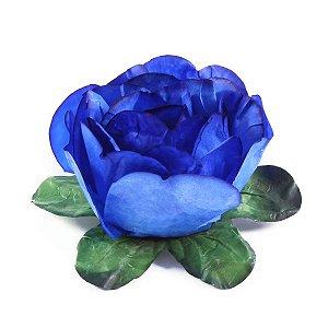 Forminhas para doces Bouganville Beauty - azul royal