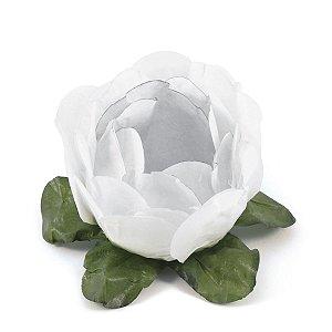 Forminhas para doces Bouganville Beauty - branca