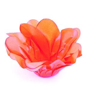 Forminhas para doces Bouganville Valence - laranja