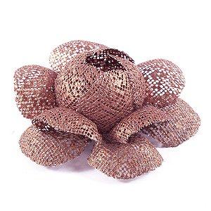 Forminhas para doces Camélia Chanel Tela - bronze