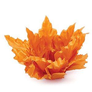 Forminhas para doces Cipreste - laranja