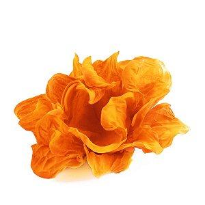 Forminhas para doces jateada 409 - laranja neon