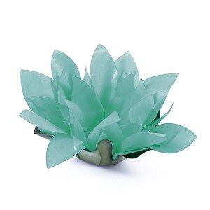 Forminhas para doces Bombom Flor de Cactus - verde água