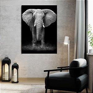 Quadro Elefante Preto e Branco