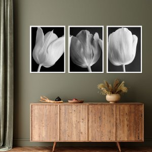 Kit Quadro Decorativo Tulipa