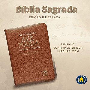 BIBLIA ED ILUSTRADA - MEDIA - MARRON