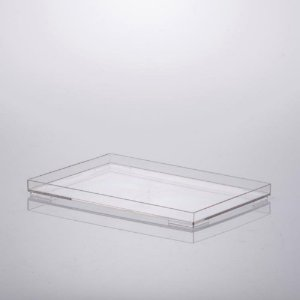 Bandeja 25x17x2cm Cristal Paramount