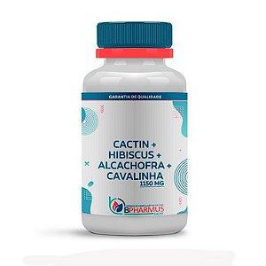 CactiDry - Bpharmus