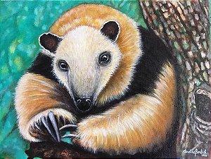 """""""Tamanduá-mirim""""- Pintura original ao óleo sobre tela 30x40 cm"""