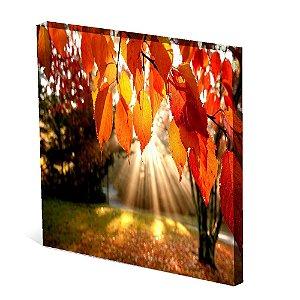 Tela Canvas 30X30 cm Nerderia e Lojaria paisagem6 colorido