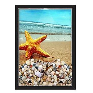 QUADRO CAIXA 33X43  PORTA CONCHAS NERDERIA E LOJARIA conchas estrela do mar 02 preto