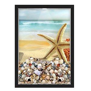 QUADRO CAIXA 33X43  PORTA CONCHAS NERDERIA E LOJARIA conchas estrela do mar preto