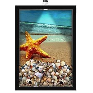 Quadro Caixa Porta Conchas 33x43 cm (Com Led) Lojaria e Nerderia. conchas estrela do mar 02 preto