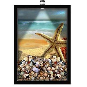 Quadro Caixa Porta Conchas 33x43 cm (Com Led) Lojaria e Nerderia. conchas estrelas do mar preto