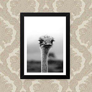 Quadro Decorativo 23x33cm Nerderia e Lojaria avestruz preto