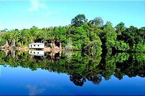 FELICIDADE : REFLEXÃO AMAZÔNICA 1