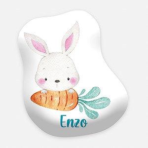 Toy Coelho da Páscoa com cenoura - menino
