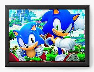 Quadro Decorativo Sonic Generations