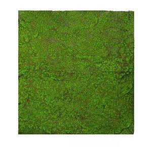 Folhagem Artificial Placa Musgo Trat. Acústico Verde Marrom 1x1m