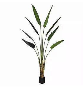 Planta Árvore Artificial Palmeira Viajante com Pote Verde 1,8m