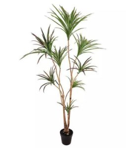 Planta Árvore Artificial Dracena Verde Escuro 1,95m