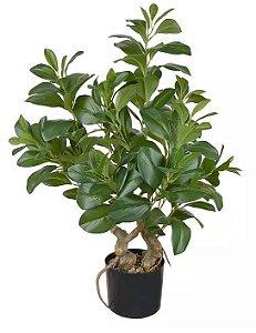 Planta Árvore Artificial Clúsia Verde Real Toque 78cm