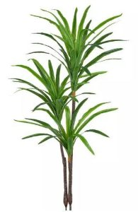 Planta Árvore Artificial Dracena Real Toque Verde Creme 1,4m