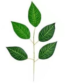 Folhagem Artificial Zebrada Verde em 2 Tons 54cm