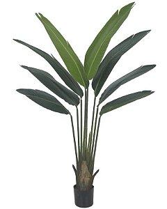 Planta Artificial A Palmeira Viajante - X8 1,2m