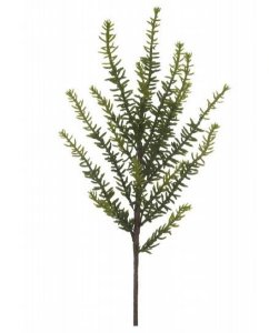 Folhagem Suculenta X16 Verde 33 cm