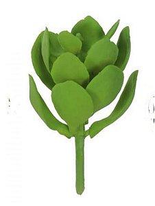 Folhagem Suculenta Verde (11cm)