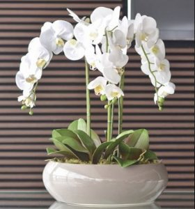 Arranjo com 3 Orquídeas Brancas de Silicone + folhinhas de Orquídea e Vaso de Cerâmica marrom