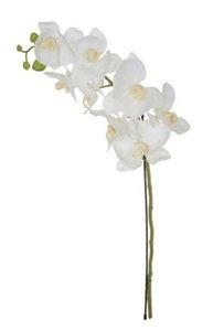 Haste Flor Artificial Orquídea Phalaenopsis Real Toque X8 77cm