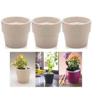 Kit Plantar 3 Vaso Autoirrigável Plantas Flor Tempero Jardim - KTE 021 Ou - Bege