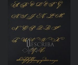 Manuscrito Alfabeto Copperplate - Rebuscado - D02