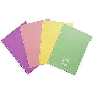 Divisórias Pastel Grande P/ CI - unitário - Caderno Inteligente