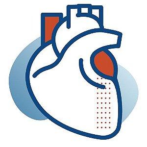 Consulta Cardiologia