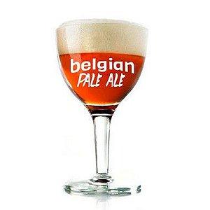 Kit Receita Cerveja Belgian Pale Ale - 10L