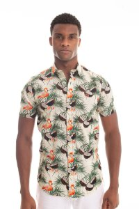Camisa Flamingo Coconut