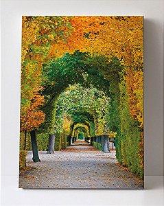 Quadro em Canvas Caminho Outono em Parque
