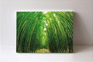 Quadro em Canvas Floresta de Bambu