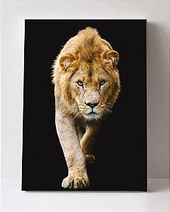 Quadro em Canvas Leão