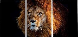Kit 3 Quadros  em Tecido Canvas Leão de Judá