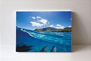 Quadro em Canvas dolphins